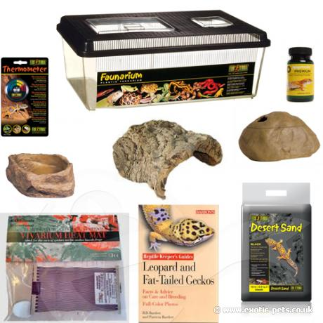 Leopard Gecko Plastic Starter Kit Leopard And Fat Tailed