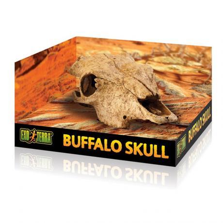 Exo Terra Buffalo Skull