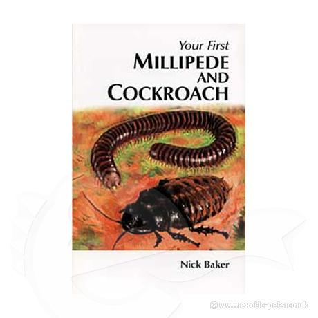 Your First Millipede and Cockroach