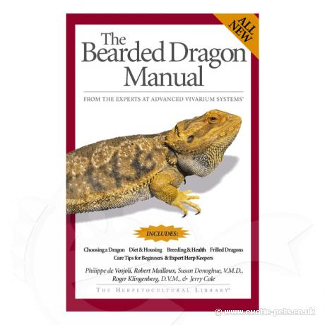 General Care and Maintenance of Bearded Dragons