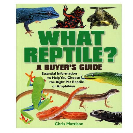 A Buyers Guide - What Reptile?