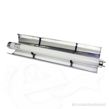Komodo T8 Reflector