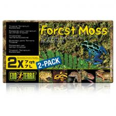 Exo Terra Forest Moss (Dried moss)