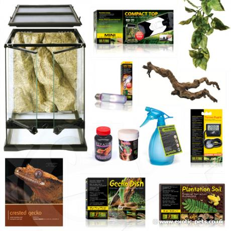 Exotic Pets Crested Gecko Starter Kit Complete Set Up