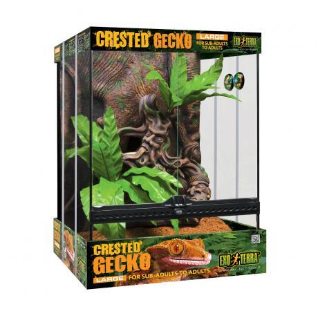 Exo Terra Crested Gecko Terrarium