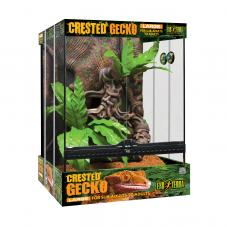 Reptile Kits