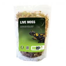 ProRep Live Moss