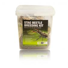 ProRep Stag Beetle Breeding and Rearing Kit (Complete Setup)