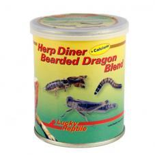 Lucky Reptile Herp Diner Bearded Dragon