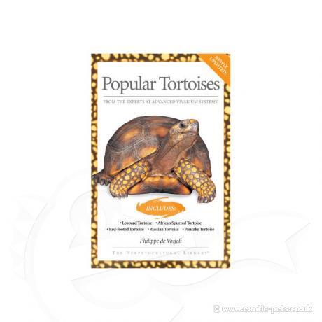 AVS - Popular Tortoises
