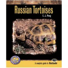 Complete Herp Care - Russian Tortoises (Author Edward Pirog)