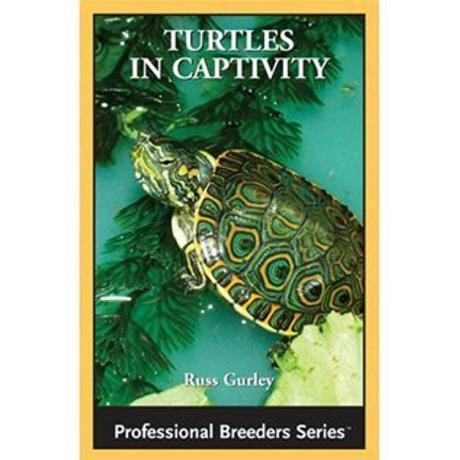 ECO - Turtles in Captivity