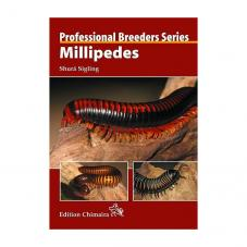 Chimaira Professional Breeders Series - Millipedes