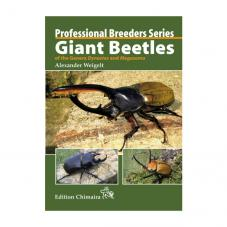 Chimaira Professional Breeders Series - Giant Beetles