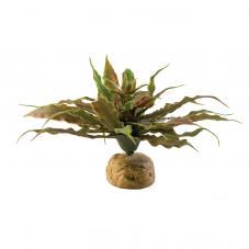Exo Terra Star Cactus (Desert plants)