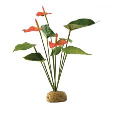 Exo Terra Anthurium Bush (Ground plants)
