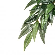 Exo Terra Silk Plant Ruscus (Hanging plants)