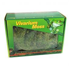 Lucky Reptile Dry Vivarium Moss