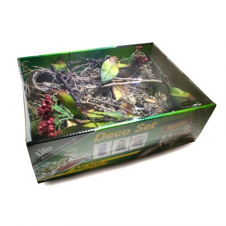 Lucky Reptile Mantis Deco Set