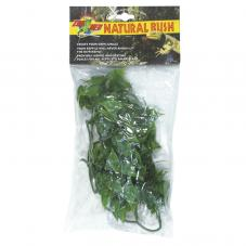 Zoo Med Natural Bush Mexican Phyllo (Plastic hanging plant)