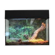 Lucky Reptile Scorpion/Tarantula Starter Kit