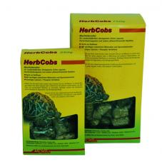 Lucky Reptile Herb Cobs