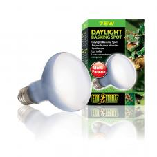 Exo Terra Daylight Basking Spot (Basking bulbs)