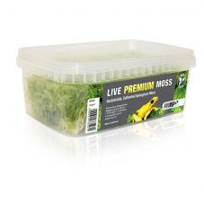 ProRep Live Premium Moss