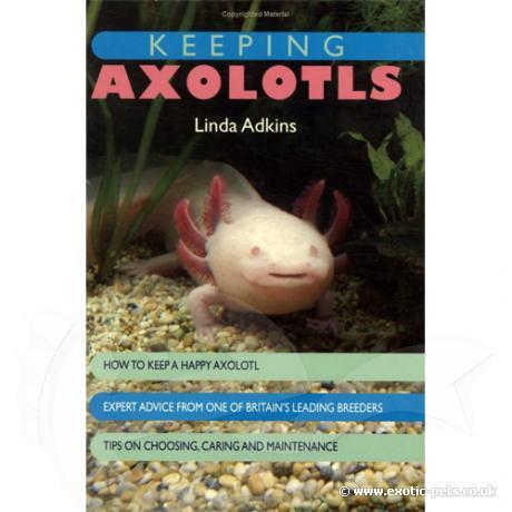 Interpet - Keeping Axolotls