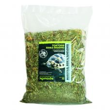 Komodo Tortoise Edible Bedding
