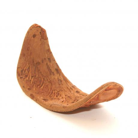 Exotic Pets Elephant Ear Seed Pods