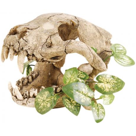 Repstyle Skull with Silk Plant