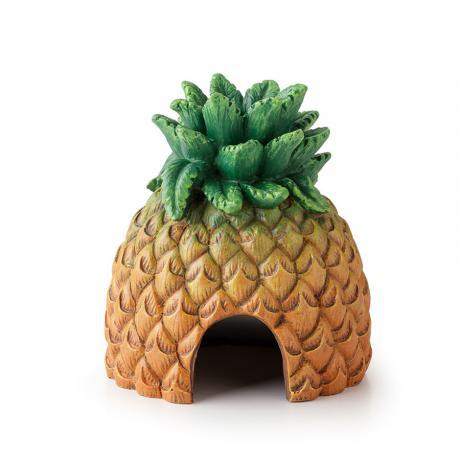 Exo Terra Tiki Pineapple Hide