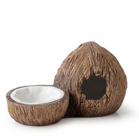 Exo Terra Tiki Coconut Hide and Water Dish