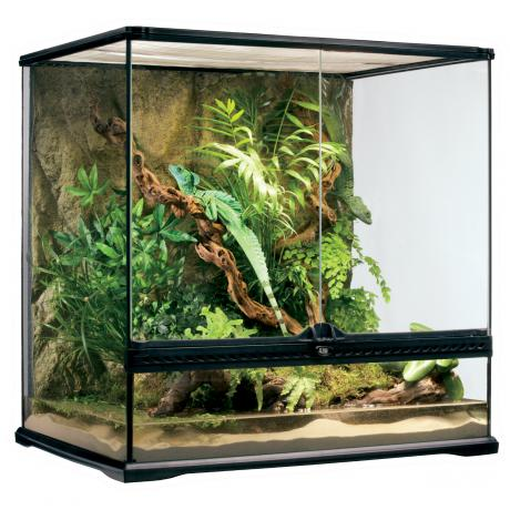 exo terra glass terrarium glass reptile housing. Black Bedroom Furniture Sets. Home Design Ideas