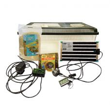 Peregrine Hatchling Snake Starter Kit (Ideal for young snakes)