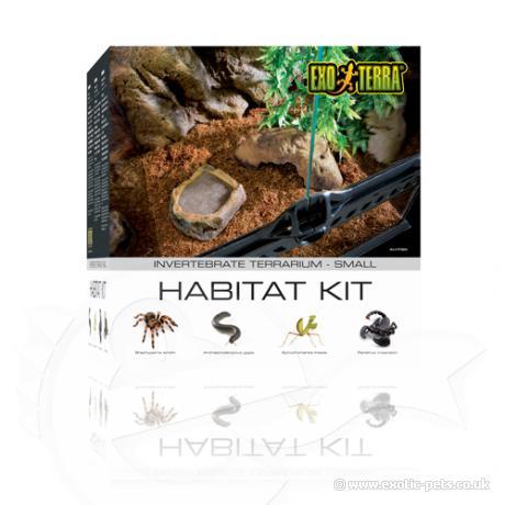 Exo Terra Invertebrate Habitat Kit