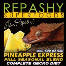 Repashy Pineapple Express (For fruit-eating geckos)