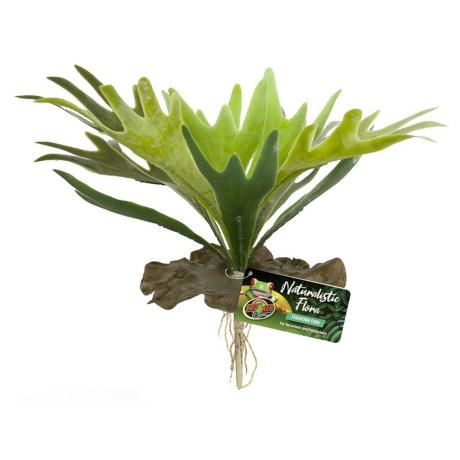 Zoo Med Naturalistic Flora Staghorn Fern