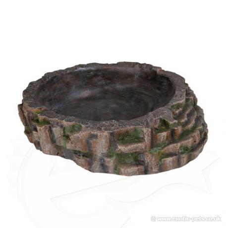 reptile pool